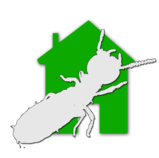 Expertise immobiliere Diagnostic termites